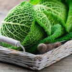 Wirsing-Torte das schützende Wintergemüse