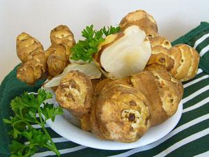 Linsen waschen und in Gemüsebrühe 6- 12 Stunden einweichen. Aufkochen und auf kleiner Hitze 20min. garen, eventuell Flüssigkeit zugeben. Sonnenblumenkerne ohne Fett anrösten , abkühlen lassen und grob zerhacken Zwiebeln und Apfel fein würfeln,Ingwer fein reiben. Zwiebeln in Olivenöl anschwitzen, Apfel, Curry, Koriander, Ingwer beigeben und zugedeckt fertig garen lassen. Mit Pfeffer und Salz abschmecken und eventuell ohne Deckel und Unter Rühren einkochen lassen bis eine Paste entsteht. Man kann auch alles Pürieren. Zuletzt die Sonnenblumenkerne dazugeben. Alles abkühlen lassen. Im Kühlschrank hält es sich 3 - 5 Tage.