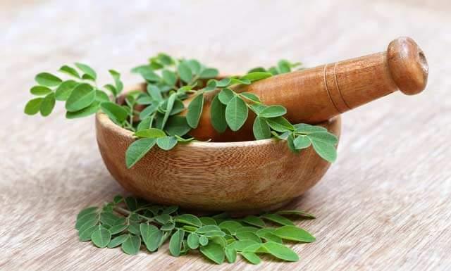 Moringa – Herkunft Wirkung & Inhaltsstoffe