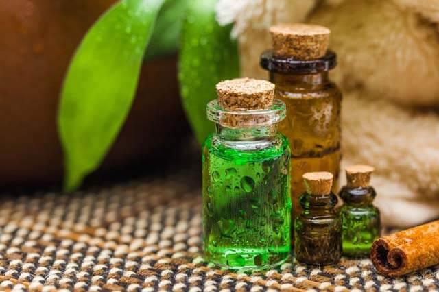 Teebaumöl Anwendung & Wirkung