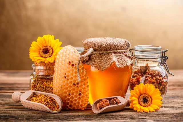 I❶I Propolis – Wirksames Heilmittel aus dem Bienenstock