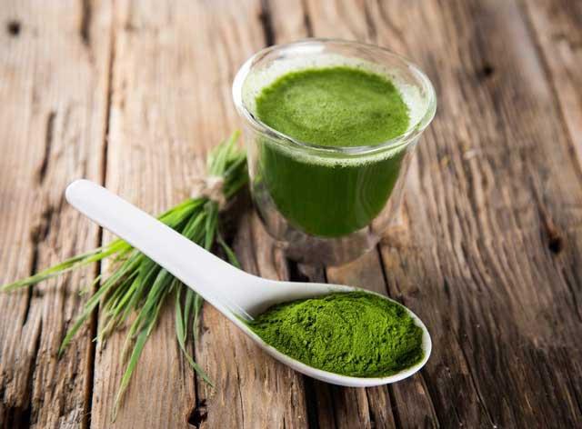 I❶I Spirulina – Warum diese Alge so gesund ist